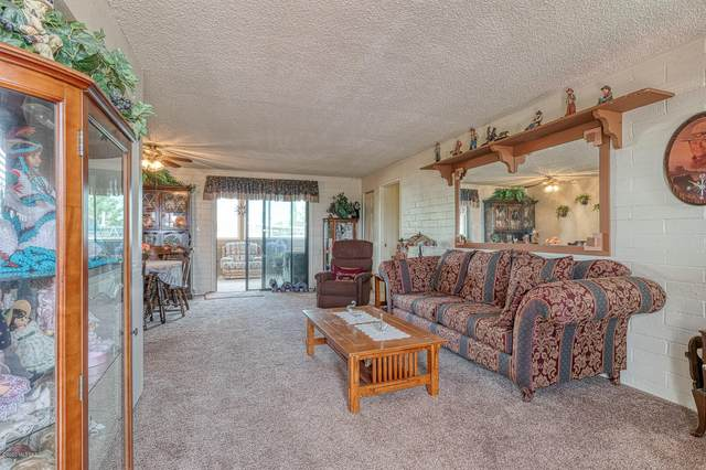 2320 W Calle Encanto, Oracle, AZ 85623 (MLS #22022577) :: The Property Partners at eXp Realty
