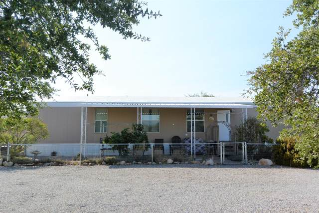 1392 E American Avenue, Oracle, AZ 85623 (MLS #22022675) :: The Property Partners at eXp Realty