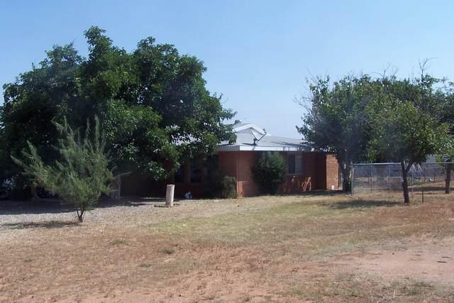 108 N Neff Place, Pearce, AZ 85625 (#22022824) :: The Josh Berkley Team