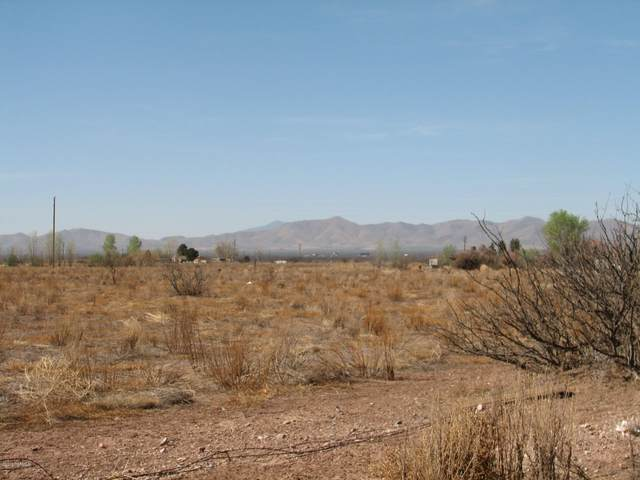 W Hill Road, Mc Neal, AZ 85617 (#22022900) :: Long Realty - The Vallee Gold Team