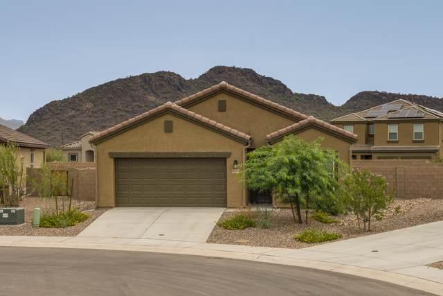 10364 Blue Roan Court, Marana, AZ 85653 (#22022924) :: Keller Williams