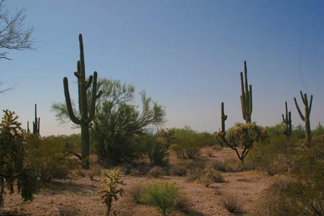 39000 S Cattle Tank Road, Marana, AZ 85658 (#22023092) :: Tucson Property Executives