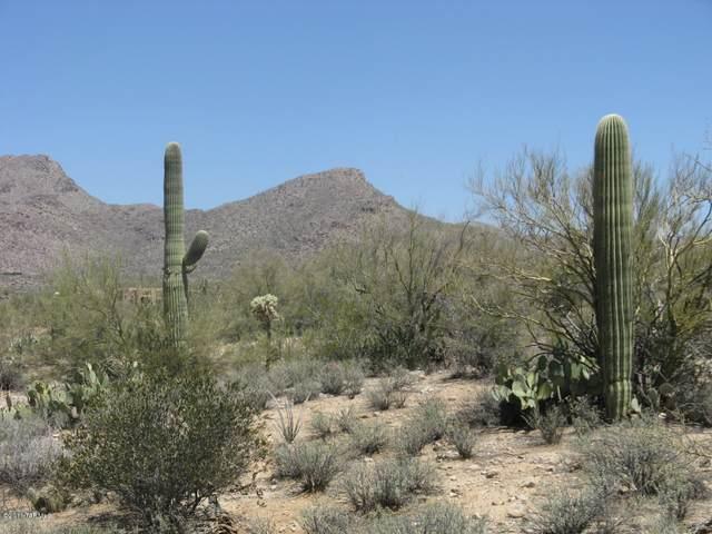 4528 W Butterfly Mountain Drive #1, Marana, AZ 85658 (#22023115) :: Tucson Property Executives