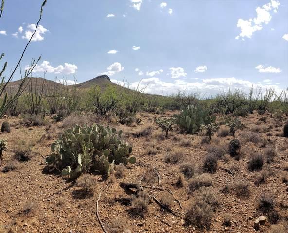9700BLK E Ocotillo Rim Trail #10, Vail, AZ 85641 (#22023261) :: The Local Real Estate Group | Realty Executives