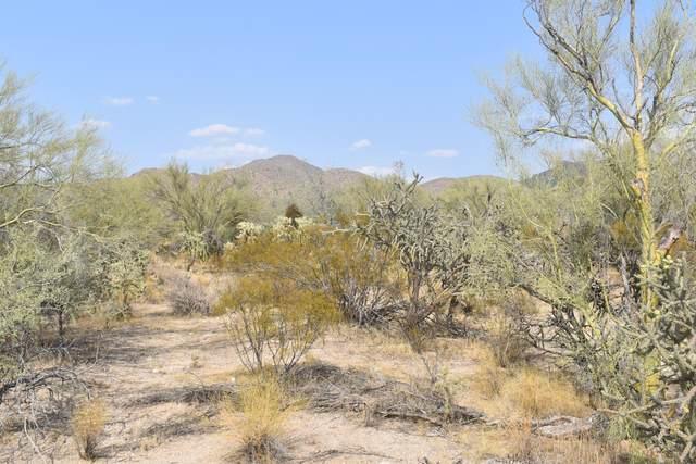 13580 N Wild Burro Road, Marana, AZ 85658 (#22023329) :: Tucson Property Executives