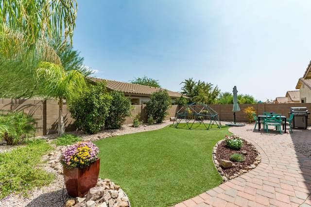 12404 N Globe Mallow Place, Marana, AZ 85658 (#22023385) :: The Josh Berkley Team