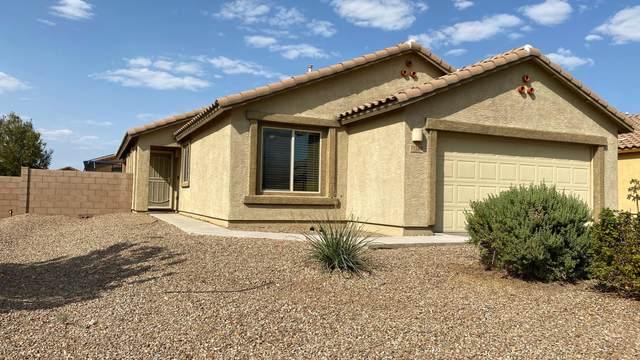 11528 W Stone Hearth Street, Marana, AZ 85658 (#22023447) :: The Local Real Estate Group   Realty Executives