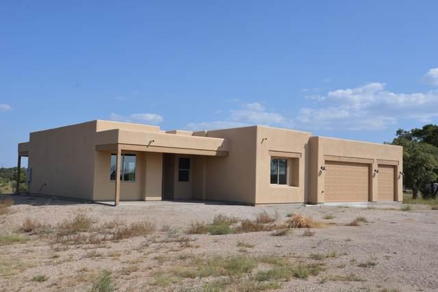 195 Papago Springs Road, Sonoita, AZ 85637 (#22023517) :: Long Realty - The Vallee Gold Team