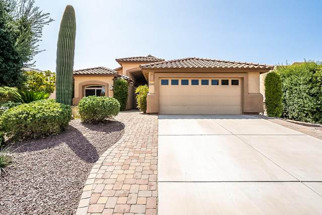 2248 E Desert Squirrel Court, Green Valley, AZ 85614 (#22023526) :: Kino Abrams brokered by Tierra Antigua Realty
