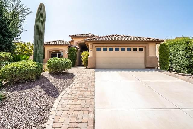 2248 E Desert Squirrel Court, Green Valley, AZ 85614 (#22023526) :: Gateway Partners