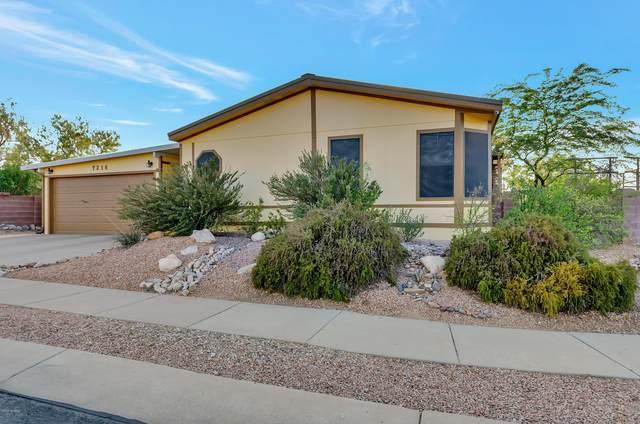 7216 S Badger Canyon Drive, Tucson, AZ 85756 (#22023637) :: Tucson Property Executives