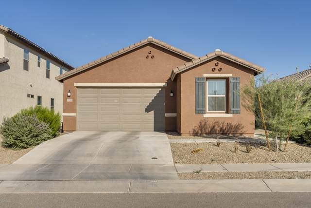 6243 S Reed Bunting Drive, Tucson, AZ 85757 (#22023685) :: Long Realty - The Vallee Gold Team