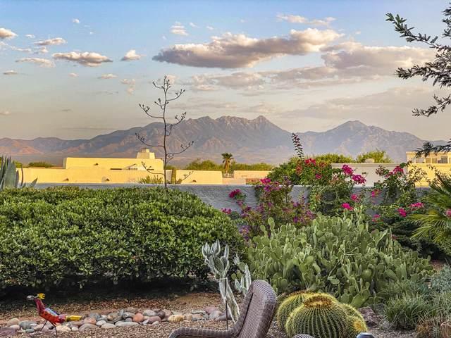 1157 W Placita Refinada, Green Valley, AZ 85614 (#22023720) :: Long Realty Company