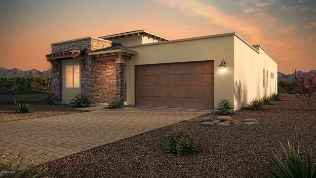 6382 N Alani Blossom Court, Tucson, AZ 85704 (#22023725) :: AZ Power Team   RE/MAX Results