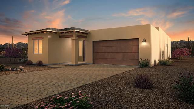 6374 N Alani Blossom Court, Tucson, AZ 85704 (#22023739) :: Gateway Partners