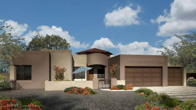 14419 E Flamingo Crescent Place, Vail, AZ 85641 (#22023766) :: Tucson Property Executives
