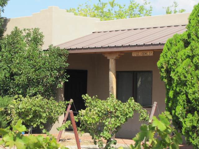 1101 E Irene Street, Pearce, AZ 85625 (#22023811) :: Gateway Partners