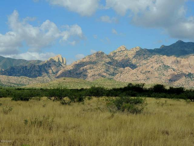 80 Ac Off Stronghold Road -, Cochise, AZ 85606 (#22023860) :: Keller Williams
