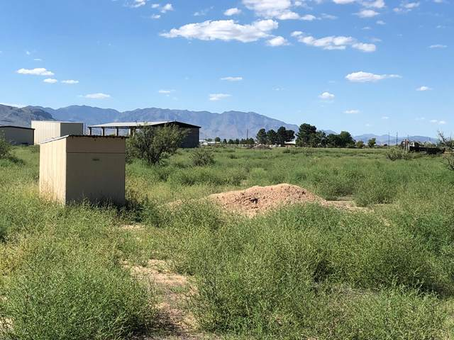 2361 N Red Oak Lane, Willcox, AZ 85643 (#22023878) :: Long Realty - The Vallee Gold Team
