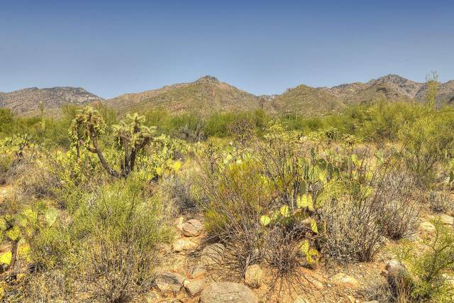 6101 N Canon Del Pajaro #15, Tucson, AZ 85750 (#22023959) :: The Josh Berkley Team