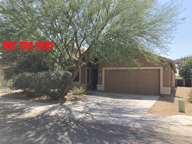 946 E Ashburn Mountain Drive, Sahuarita, AZ 85629 (#22024000) :: Long Realty Company