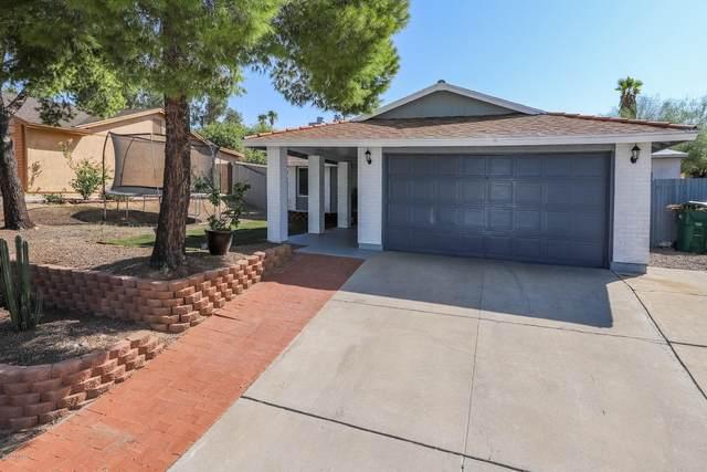 7416 N Shirley Lane, Tucson, AZ 85741 (#22024093) :: The Josh Berkley Team