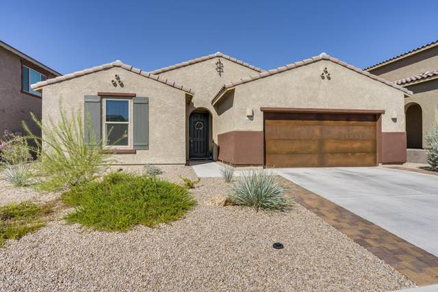 11125 N Hydrus Avenue, Oro Valley, AZ 85742 (#22024359) :: Long Realty Company