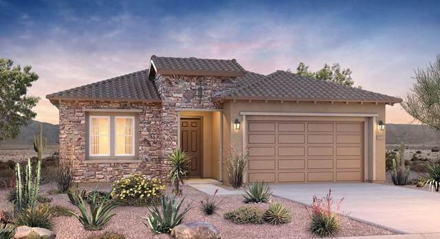 714 E Barun Valley Place E, Tucson, AZ 85755 (#22024371) :: Gateway Partners