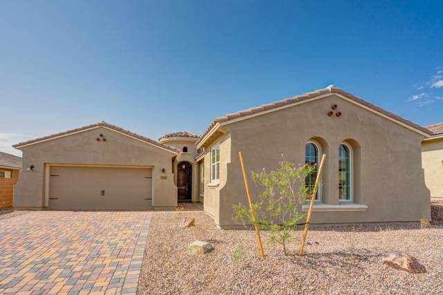 14089 N Golden Barrel Pass, Marana, AZ 85658 (#22024641) :: Kino Abrams brokered by Tierra Antigua Realty