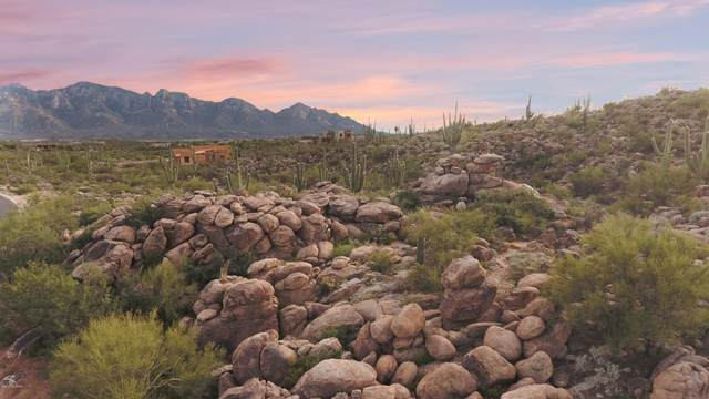 1893 W Tortolita Mountain Circle #598, Oro Valley, AZ 85755 (#22025207) :: Tucson Real Estate Group