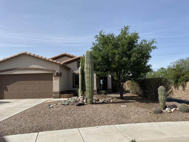 11090 W Fallen Willow Drive, Marana, AZ 85653 (#22025237) :: Gateway Partners