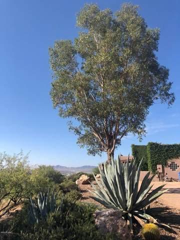 439 Camino Vista Del Cielo, Nogales, AZ 85621 (#22025273) :: AZ Power Team | RE/MAX Results
