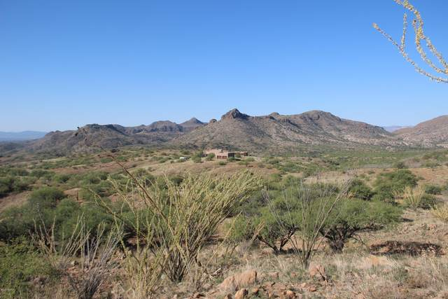 Salero Ranch Road #102, Tumacacori, AZ 85640 (#22025274) :: Tucson Property Executives