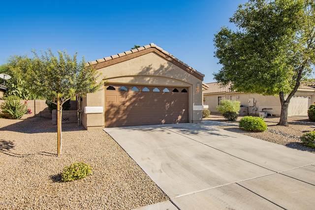 11304 W Cotton Bale Lane, Marana, AZ 85653 (#22025600) :: Keller Williams