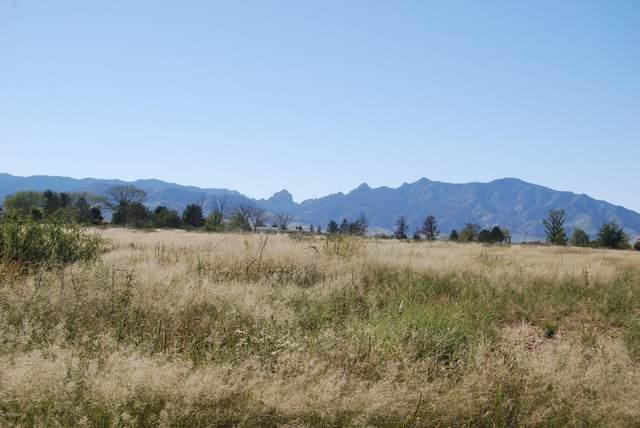 Ironwood Road N/A, Pearce, AZ 85625 (#22025638) :: Tucson Property Executives