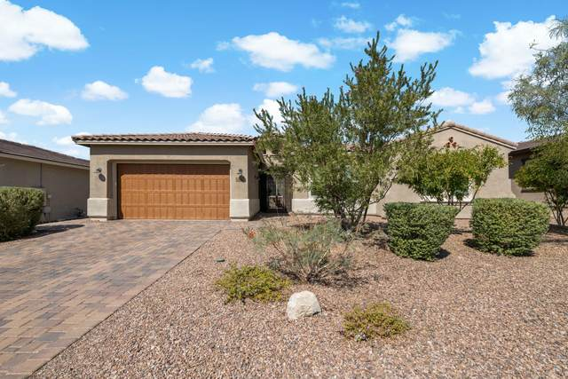 14153 Hidden Arroyo Ps, Marana, AZ 85658 (#22025669) :: Kino Abrams brokered by Tierra Antigua Realty