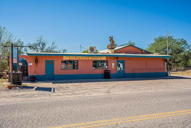 17201 W 5Th Street, Arivaca, AZ 85601 (#22025742) :: Tucson Property Executives