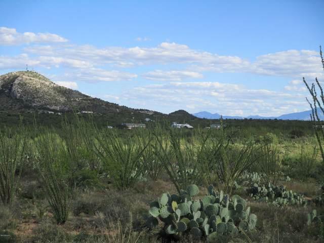 6410 W Mcgee Ranch Road, Sahuarita, AZ 85629 (#22026221) :: Gateway Partners