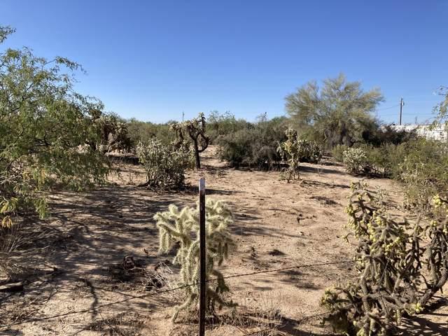 14369 W Rolina Lane 13-2, Tucson, AZ 85736 (#22026281) :: Long Realty - The Vallee Gold Team