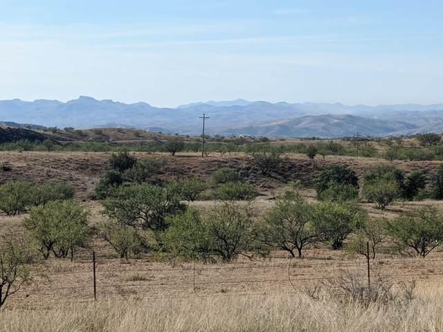 28 Lake Patagonia Road, Patagonia, AZ 85624 (#22026307) :: Tucson Property Executives