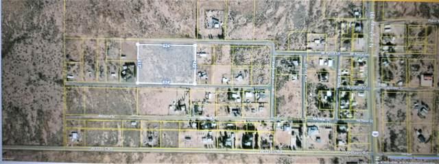 000 W Ivalma Street A, Mc Neal, AZ 85617 (#22026314) :: Gateway Partners