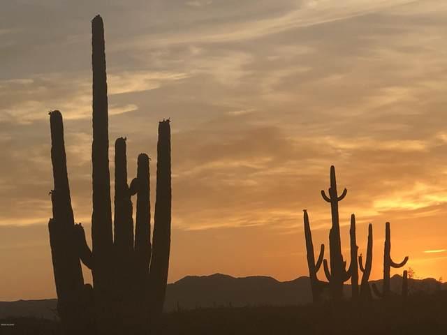 43171 E Park Link Drive, Saddlebrooke, AZ 85739 (#22026455) :: Luxury Group - Realty Executives Arizona Properties