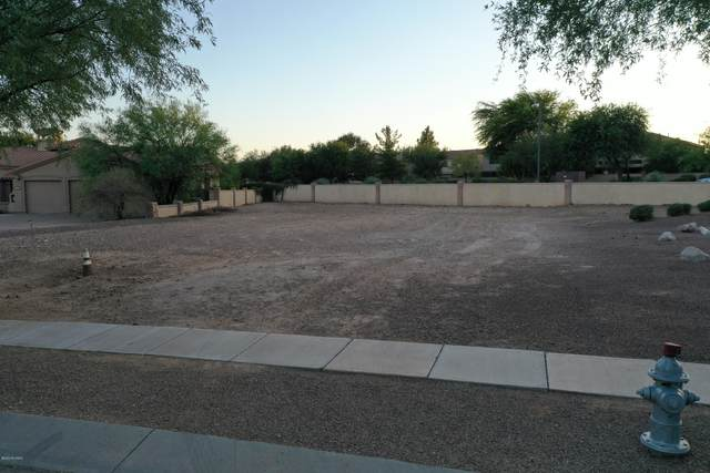 182 E Placita Haciendas Del Lago #17, Sahuarita, AZ 85629 (#22026462) :: Tucson Real Estate Group