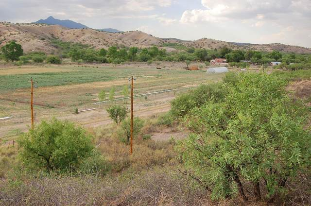 TBD Emily Lane #4, Patagonia, AZ 85624 (#22026489) :: Long Realty Company