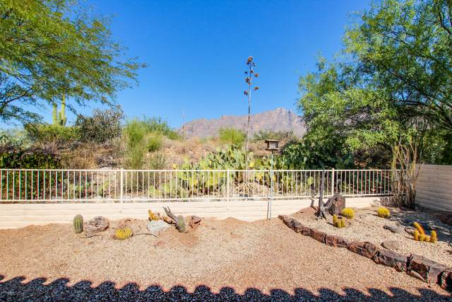 3891 E Calle Cayo, Tucson, AZ 85718 (#22026592) :: Long Realty - The Vallee Gold Team