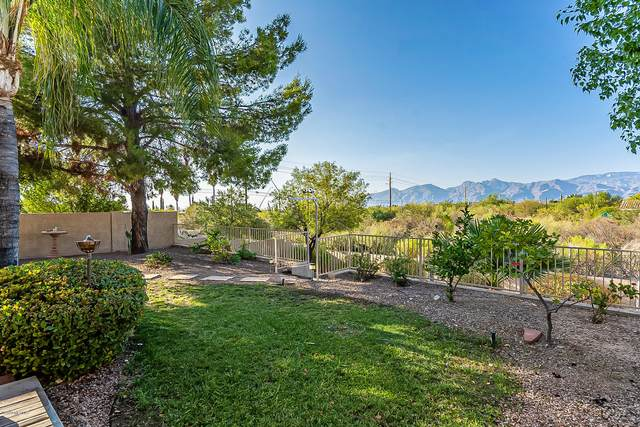 9519 E Briana Lane, Tucson, AZ 85748 (#22026634) :: Long Realty - The Vallee Gold Team