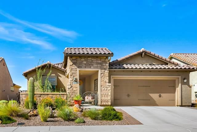 14009 N Del Webb Trail, Marana, AZ 85658 (#22026793) :: Long Realty Company