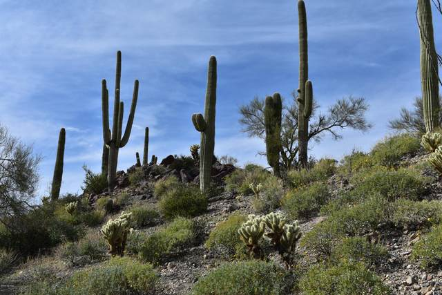 N Ave Dos Vistas, Tucson, AZ 85745 (#22026953) :: Gateway Partners