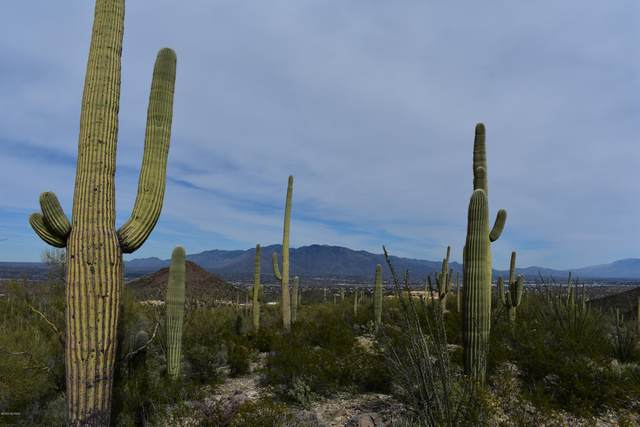 Ave Dos Vistas, Tucson, AZ 85745 (#22026962) :: Gateway Partners