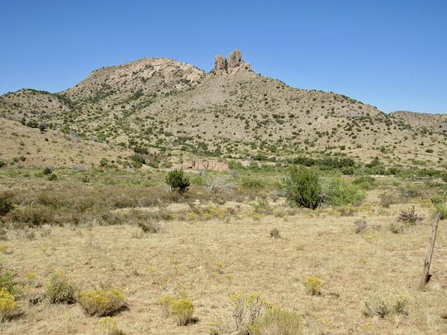 19 Acres W Hilltop Road, San Simon, AZ 85632 (MLS #22026975) :: My Home Group